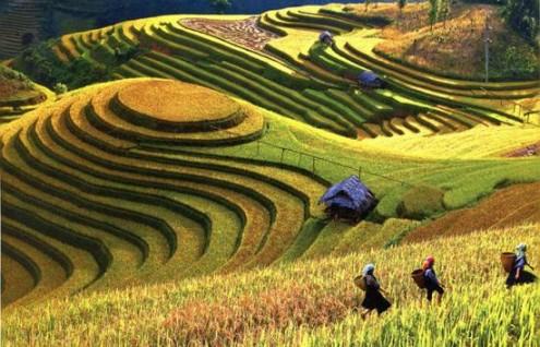 China: Ruta de la Seda- Hasta Octubre
