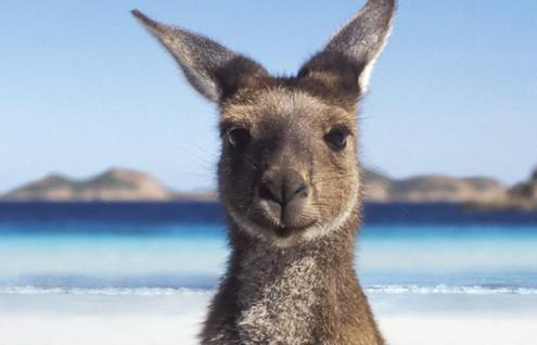 Australia - Hasta Marzo 2020
