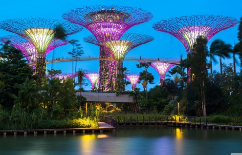 Asia - Singapur - Hasta Diciembre | Paquetes 2020
